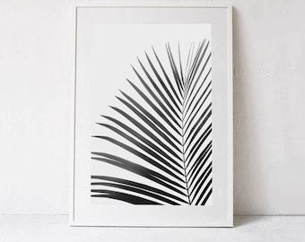 Palm Leaf Print Palm PRINTABLE ART, Black and White Print DOWNLOAD Digital Print, Large Wall Art Photography, Black and White Minimalist Art