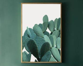 Cactus Wall Art Print, Green Cactus Print, Cactus Decor, Cactus Photo Print INSTANT DOWNLOAD Art, Botanical Print, Plant Printable Art 24x36