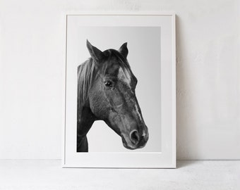 Horse Print-Horse Photo-Grey Decor-Horse Art-INSTANT DOWNLOAD PRINTABLE Art-Black and White Photography Download Art-Grey Wall Art Print-A2