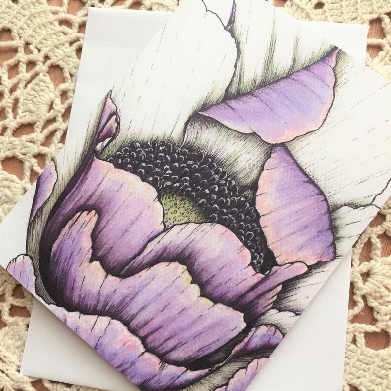 Arkansas Artist Jeanetta Darley botanical violet purple anemone flower Violet Blush greeting card