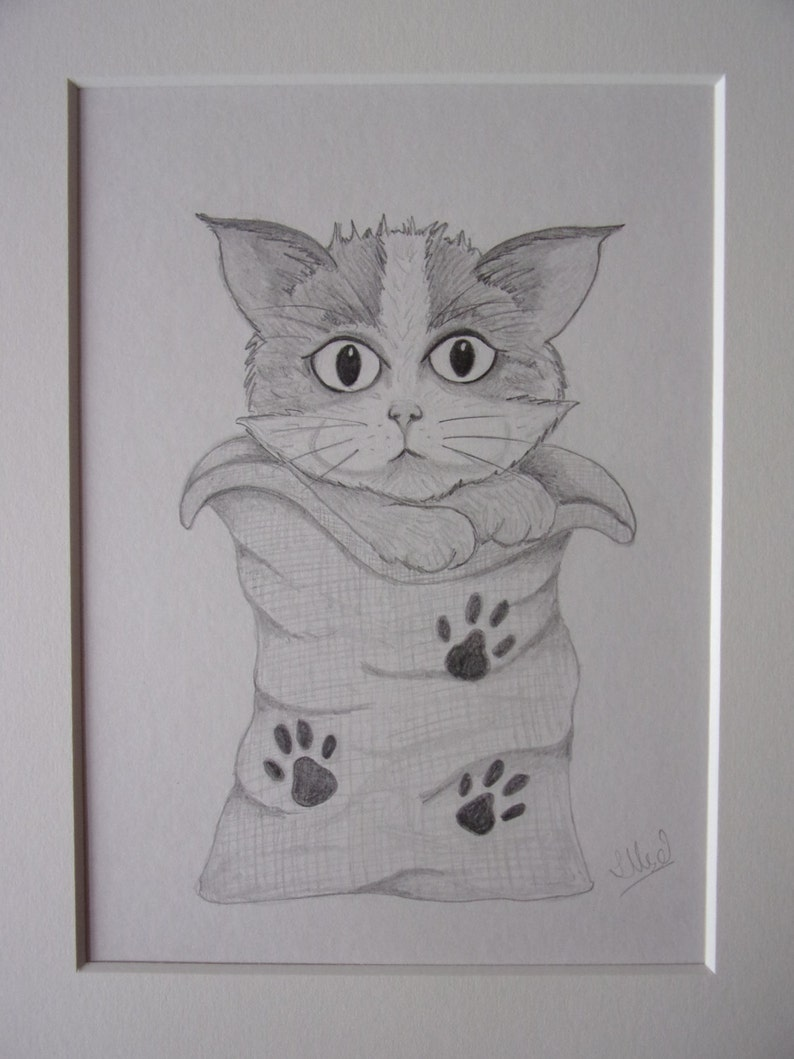 Cat pencil drawing cat drawing pencil sketch 10x8 drawing cat pictures