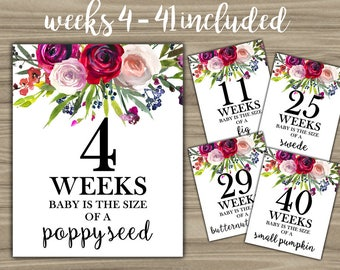 Weekly Pregnancy Signs - INSTANT DOWNLOAD - Pregnancy Weeks Photo Prop Baby Is Size Of A - Floral Pregnant Sign Flowers Weeks 4-41 - L43