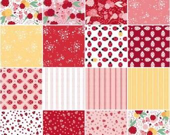 Ladybug Mania Fat Quarter Bundle, 15 Pieces, Meags & Me, Clothworks, Cotton Quilt Fabric, Floral Fabric