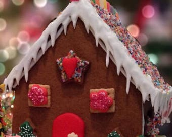 10pc Gingerbread House