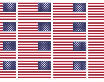 3b6af2422226 x12 Reversed American Flags 2