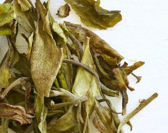 KENYA NANDI SAFARI - Organic Loose Leaf Tea, loose leaf white tea, gift for her, top selling book lover tea gift, Exotic soothing floral cup