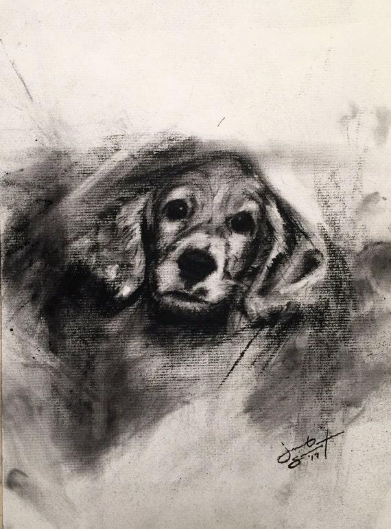 """Untitled Pet Portrait - Charcoal on Paper - 10""""x8"""""""