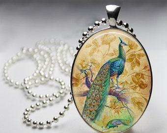 Vintage Bird Peacock Oval Glass Pendant, Photo Glass Necklace, Glass Keychain