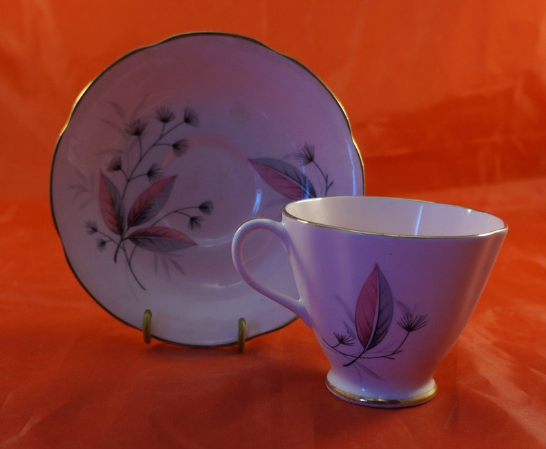 Royal Stuart Fine Bone China Cup & Saucer Leaves on Pink Body Home ...