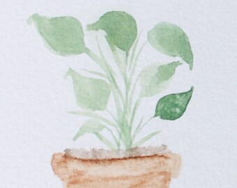 Watercolor Plant- digital painting