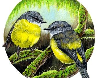 Forest Secrets - Yellow Robin