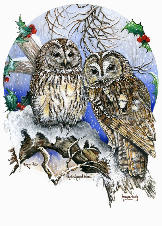 The Enchanted Wood - Tawny Owls