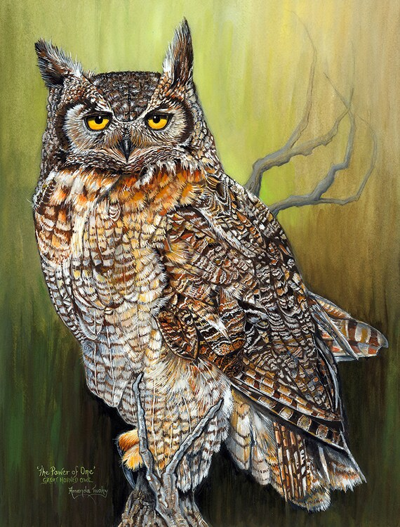 The Power of One - Great Horned Owl