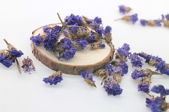 Dried statice flower seed 30g dried flower filler purple etsy image 0 mightylinksfo