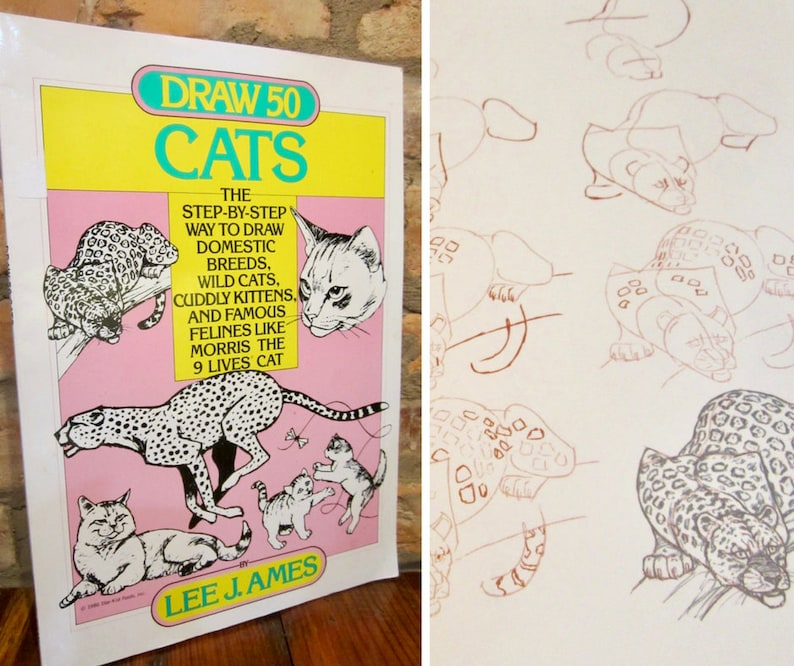 Cat Drawing Book How To Draw 50 Cats Zephyr Books Cat Lover Etsy