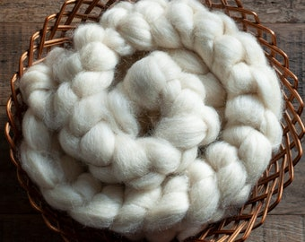 Undyed Natural White Gotland top, UK grown and milled, spinning fibre, 115 gram bumps
