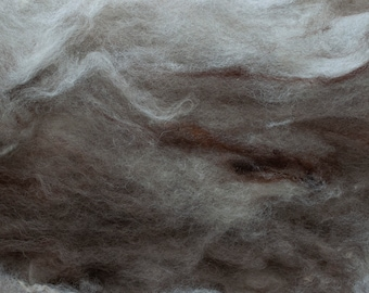 Undyed natural grey and brown Romney batt, hand carded, organic, undyed, approx. 25 grams