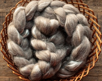 Undyed oatmeal BFL mulberry silk blend top spinning fibre, 150 grams per bump, sourced from the UK