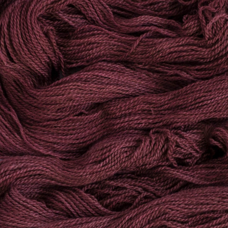 non-superwash 260 yards Dk weight yarn Tern DK Barberry 2 ply BFLMasham 100 grams 7525