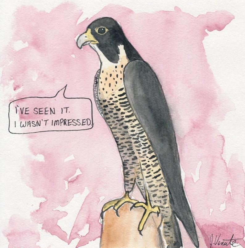 The Peregrine Falcon image 0