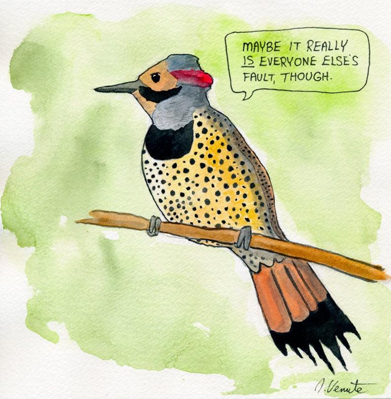 The Northern Flicker image 0