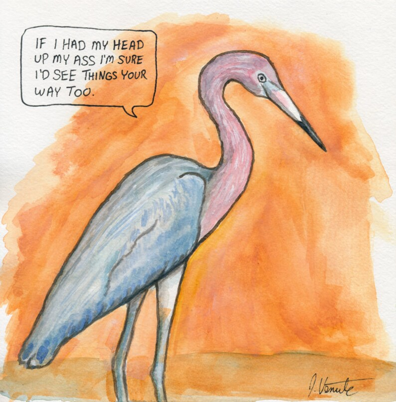 The Reddish Egret image 0