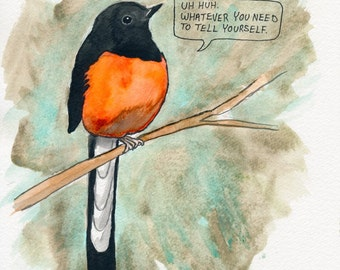 The White Rumped Shama