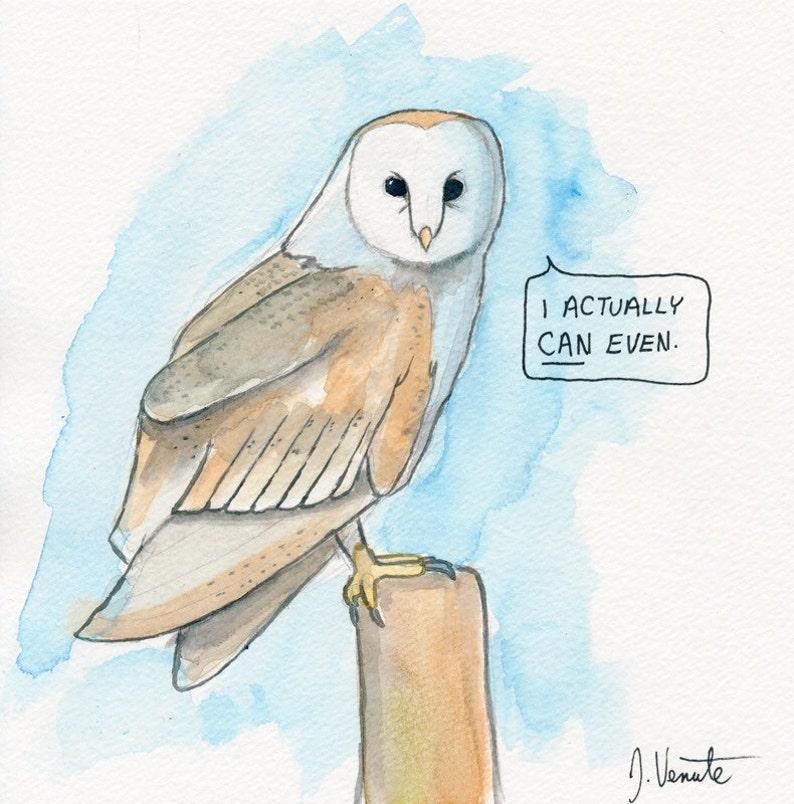 The Barn Owl image 0