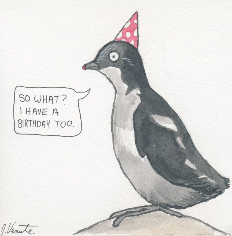 The Least Auklet image 0