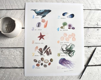Watercolor Ocean Number Chart   Counting   Education   Coastal   Nursery Decor