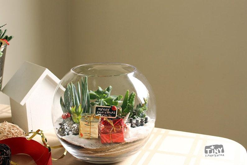 Personalised Gift Succulent Terrarium Bowl Melbourne Etsy