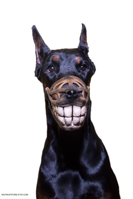 716eb299d0be Pet Gift Funny dog muzzle Hand painted Smile dog muzzle