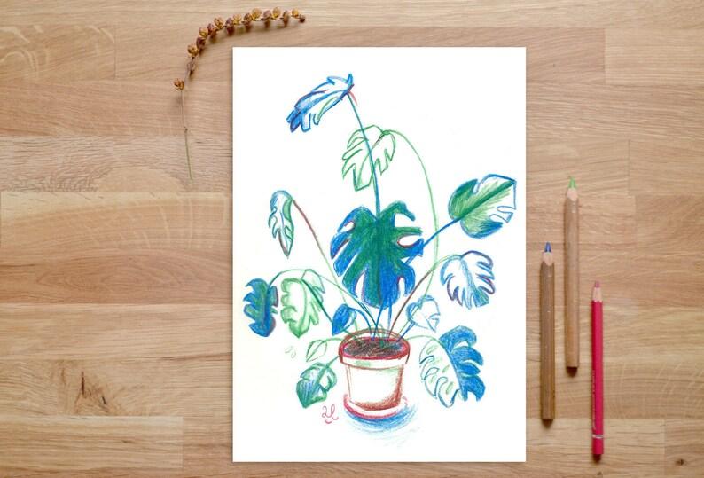 Plant Print tropical print potted plant plant illustration image 0