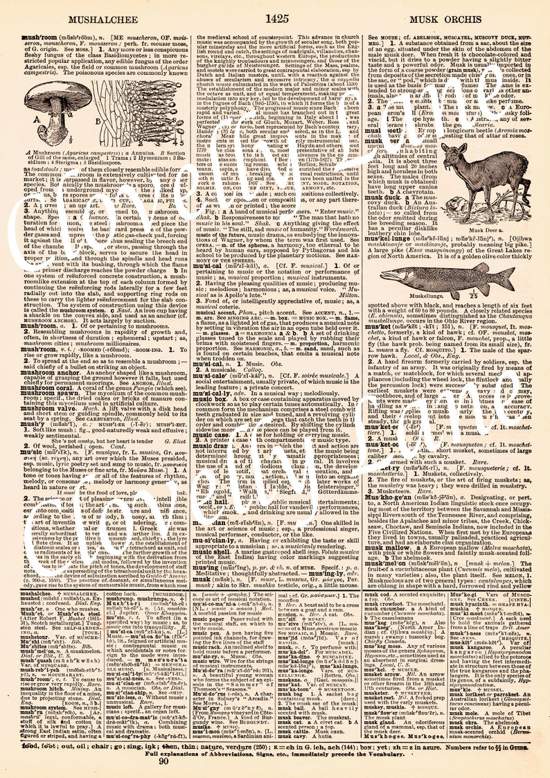 picture regarding Printable Vintage Dictionary Pages named Antique common dictionary webpages paper immediate Electronic Obtain printable collage sheet for artwork craft magazine site ephemera merged media