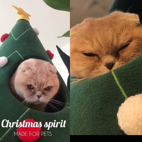 Magnificent Christmas Tree Cat House Cat Furniture Christmas T Idea Pet Furniture Cat Teepee Dog Bed Decoration On Christmas For Pet Lovers Xmas T Pabps2019 Chair Design Images Pabps2019Com