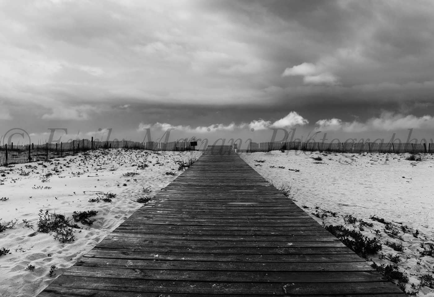 Ocean photography black and white photography beach prints ocean prints bridge prints nature photography landscape photography prints