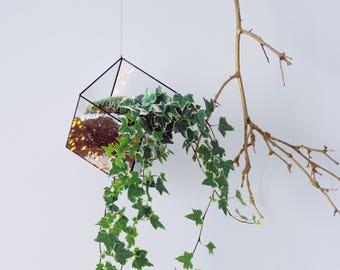 Suspended glass terrarium. Geometric. Cube. Space saving. Hanging plant. Cactus. Valentin's Day. Birthday gift. Indoor garden. Stained glass