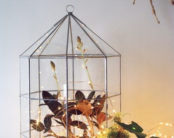 Geometric lamp. Glass terrarium. Greenhouse. Hanging plants. Carousel. Light box. Valentin's Day. Rustic decor. Pendant light. Wedding.