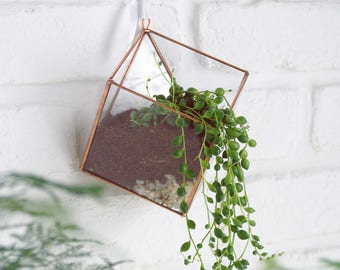 Suspended glass terrarium. Wall decor. Geometric. Space saving. Hanging plant. Valentin's Day. Birthday gift. Indoor garden. Stained glass.