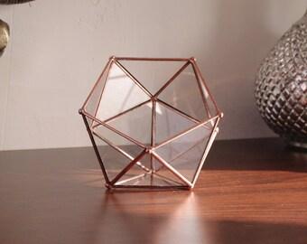 Little glass terrarium, jewelry box or rings box for wedding ! Icosahedron. Geometric. Minigarden. Cactus. Valentin's Day. Gift