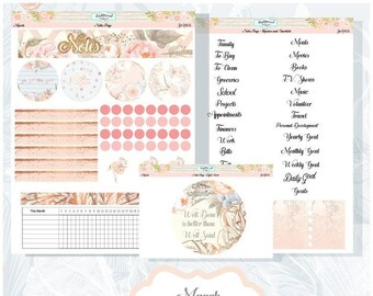 Planner Stickers Erin Condren March Monthly Notes Pages