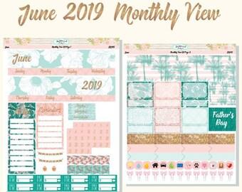 Erin Condren Planner Stickers June 2019 Monthly View Kit