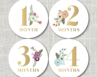 baby month stickers etsy
