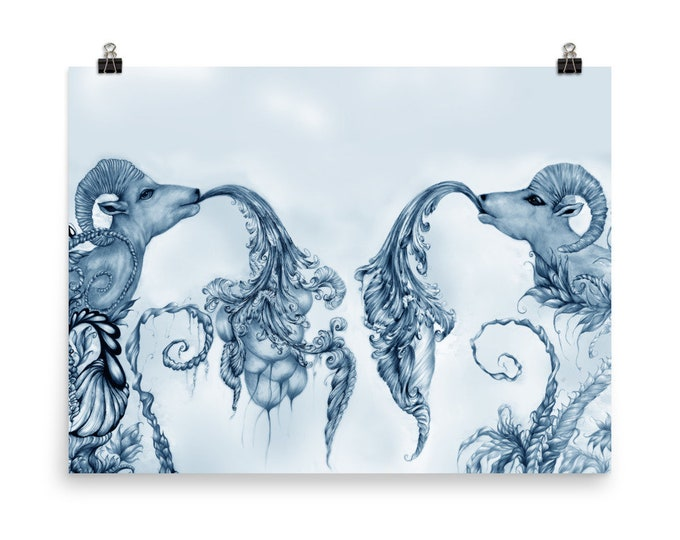 Blue Rams fine Art Print