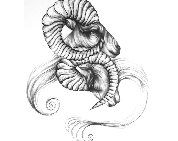 Within - Fine Art Print