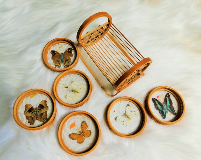 70s Bamboo Caddy and Butterfly Coaster Set / Vintage Wicker Coaster Set