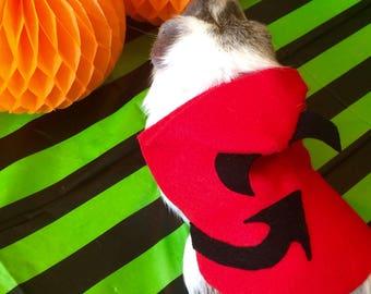 Guinea pig costume for Halloween - Devil costume for small pet