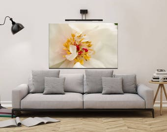 Floral Nature Photograph Eye of Peony - Fine Art Canvas - Home Decor Unframed Wall Art Prints