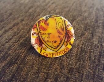 Gryffindor Inspired Pin