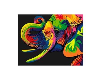 Paint by numbers kit Rainbow Elephant